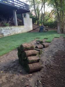 creation pelouse en rouleaux