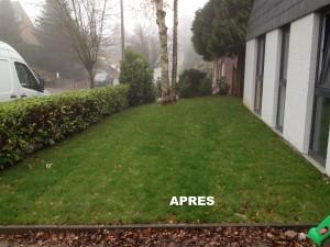 Creation de pelouse en rouleaux - phase 3 - LBO SERVICES