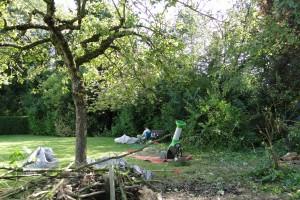Entretien de jardin en avril 8- LBO SERVICES